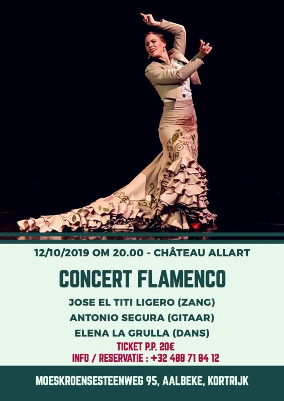 Muzieksalon - 2019 - 12.010 - Kasteel Allart - Flamenco